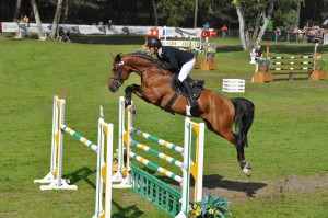 ANDIAMO SEMILLY WITH O.MARTIN Championship of 6 years at Fontainebleau 2016