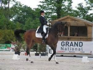 grand national du Dressage