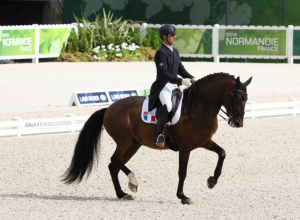 Arnaud Serre