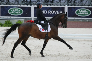 Vladimir Vinchon Para Dressage PSV Photo