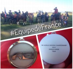 La France est vice-championne du monde de l'attelage à 1 cheval
